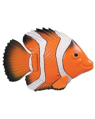 Acheter poisson nageur orange et blanc pas cher for Acheter poisson