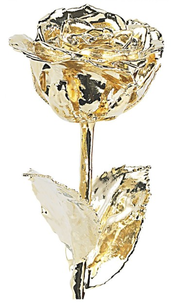 Rose éternelle - Dorée à l'or 24 carats