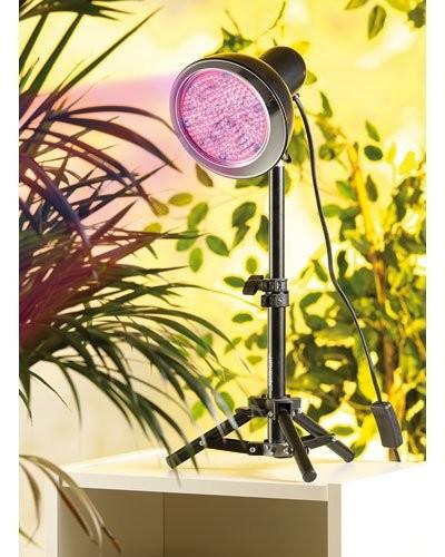 Ampoule de croissance 48 LED E27 ''Fast Grow''