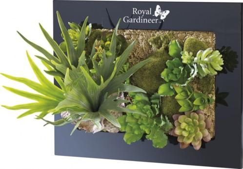 Tableau végétal avec plantes artificielles - 39 x 29 cm