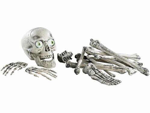 Kit Lugubre 18 Pièces : Tête de Mort et Os