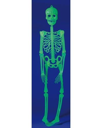 Squelette phosphorescent 90 cm