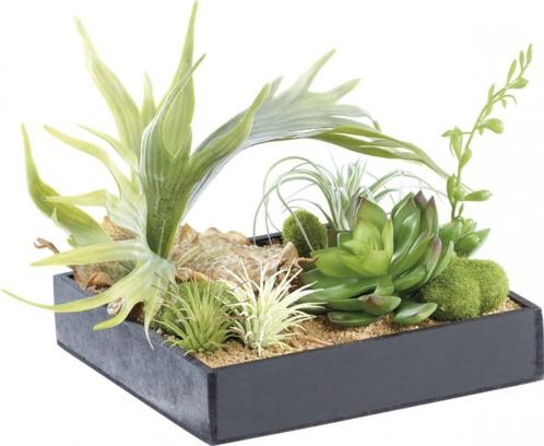 Tableau végétal avec cadre - Herbacées - 20 x 20 cm