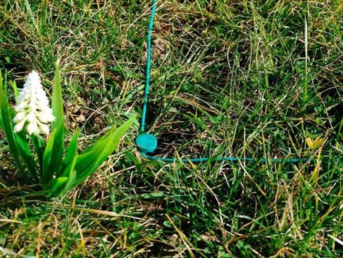 Crochets de fixation pour câble de délimitation de tondeuse NX5128