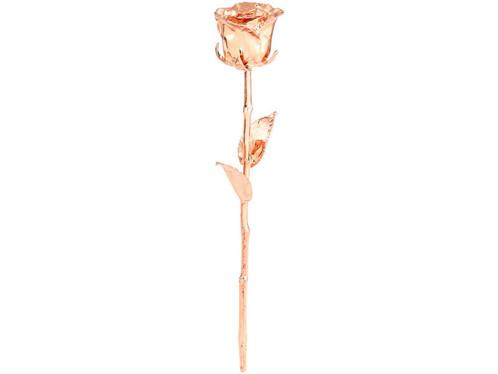 véritable rose plaqué or rose 24 carats idee cadeau femme st valentin