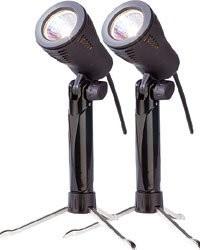 Pack de 2 Lampes Photos 50 W / 5300 K