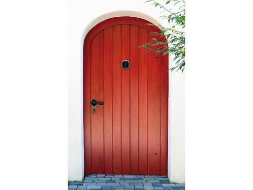 Caméra judas numérique à enregistrement manuel