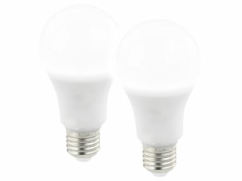 Deux ampoules LED E27 blanc lumière du jour avec une luminosité de 1000 lumens.