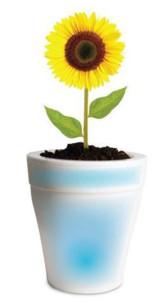 pot de fleur lumineux avec led à couleurs changeantes 19 cm