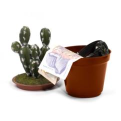 cachette bijoux argent objets de valeur faux cactus pot creux Kaktus Safe thumbs up