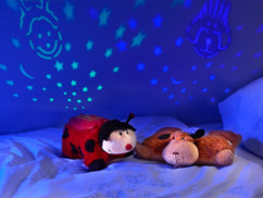 Coccinelle Florian avec projection d'étoiles et changement de couleurs