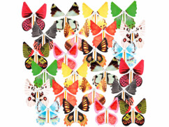 Lot de 24 papillons géants en papier