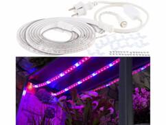 Bandes de culture à LED avec adaptateur secteur - 6 m