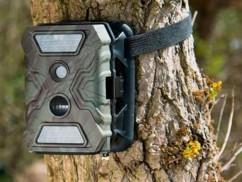Caméra nature Full HD VisorTech ''WK-620.gsm'' - avec puce GSM