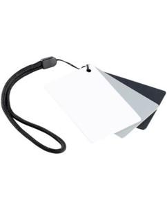 Charte de gris pour balance numérique des blancs 3 en 1