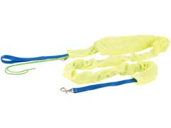 collier en nylon pour chien avec laisse et housse réfléchissante pour promenade de nuit