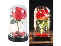 rose rouge artificielle sous cloche avec led style belle et la bete decoration romantique st valentin