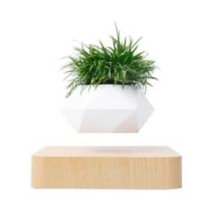 Mini-jardin en lévitation Babylonia, par MagneticLand.