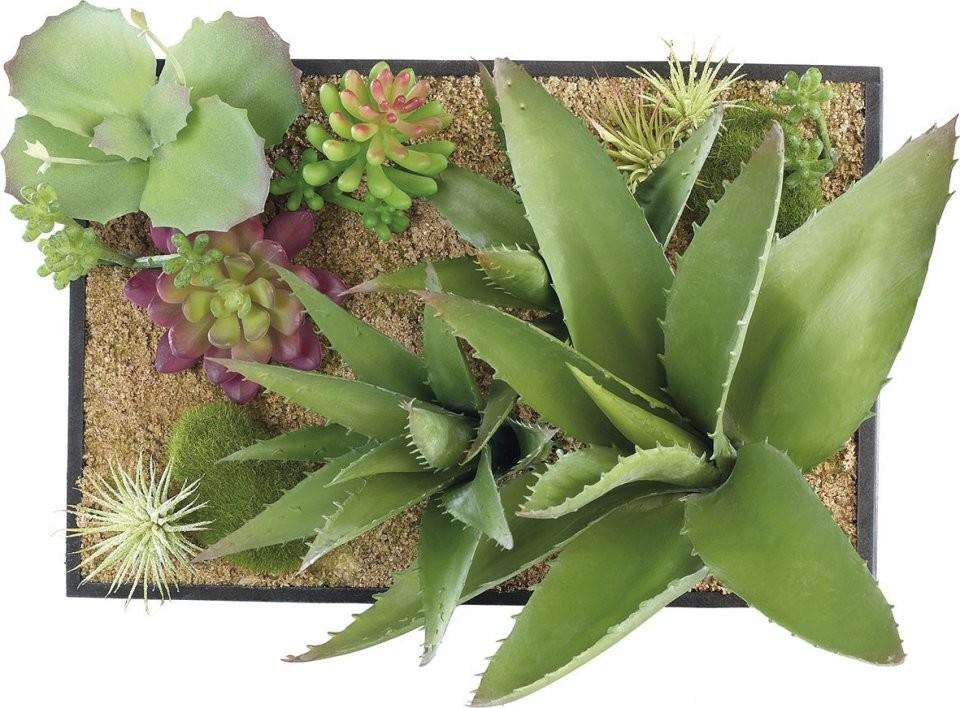 tableau v g tal accrocher ou poser 2 types de plantes. Black Bedroom Furniture Sets. Home Design Ideas